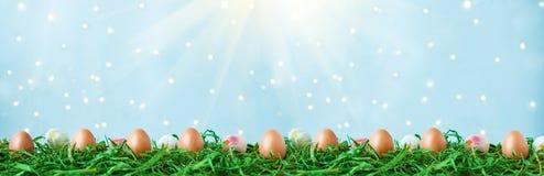 Wielkanocni jajka na zielonej trawie, tulipanach z bokeh i świetle słonecznym na błękitnym tło wielkanocy pojęciu, zdjęcia stock