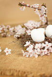 Wielkanocni jajka w gniazdeczku z kwiecistą dekoracją Obrazy Royalty Free