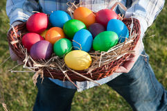 Wielkanocni jajka w panier Obrazy Stock