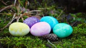 Wielkanocni jajka w różnych kolorach zdjęcie wideo