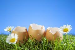 Wielkanocni jajka w trawie Zdjęcia Stock
