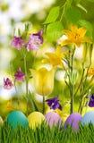Wielkanocni jajka w trawie i kwiatach Zdjęcie Stock