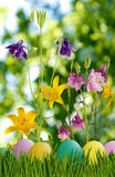 Wielkanocni jajka w trawie i kwiatach Zdjęcia Royalty Free