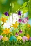 Wielkanocni jajka w trawie i kwiatach Fotografia Royalty Free