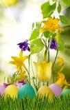Wielkanocni jajka w trawie i kwiatach Obrazy Royalty Free