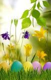 Wielkanocni jajka w trawie i kwiatach Fotografia Stock