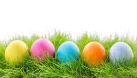 Wielkanocni jajka w trawie na bielu Fotografia Stock