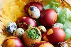 Wielkanocni jajka z greenery Obraz Stock