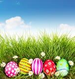 Wielkanocni jajka z kwiatem na Świeżej Zielonej trawie Zdjęcie Stock