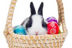Wielkanocni jajka Z Małym królikiem Fotografia Stock