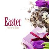 Wielkanocni jajka z purpurowymi tulipanowymi kwiatami i prezentami Zdjęcia Stock