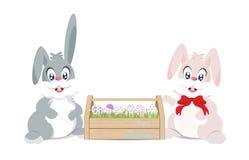 Wielkanocni króliki i Easter jajka w drewnianym pudełku dla dekoraci Zdjęcie Royalty Free