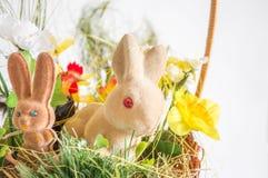 Wielkanocni króliki i kurczak Zdjęcie Royalty Free