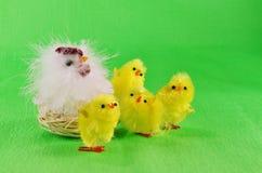 Wielkanocni kurczątka i macierzysta karmazynka Zdjęcie Stock