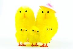Wielkanocni kurczątka rodzinni Zdjęcia Royalty Free