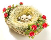Wielkanocni przepiórek jajka w gniazdeczku Zdjęcie Stock