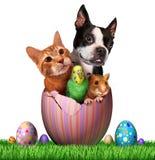 Wielkanocni zwierzęta domowe ilustracji