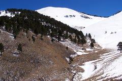 Wielkanocny śnieg w górach zbliża ruidoso obraz stock