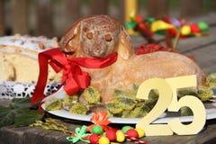 Wielkanocny baranek z wielkanoc torta 25 Frontowym widokiem fotografia stock