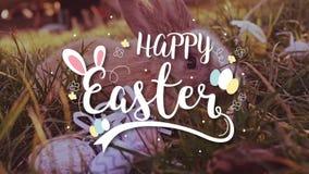 Wielkanocny biały królik z Easter jajkami siedzi w trawie zbiory