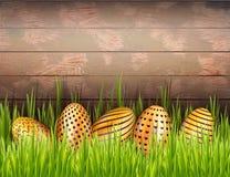 Wielkanocny drewniany tło z rzędem dekorujący złoci jajka chujący w świeżej zielonej trawie royalty ilustracja