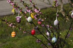 Wielkanocny drzewo w ogródzie Fotografia Royalty Free