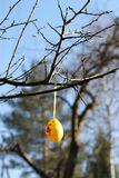 Wielkanocny jajko Obraz Royalty Free