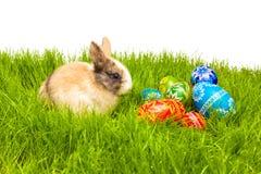 Wielkanocny jajko i królik na trawie Zdjęcie Stock