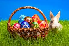Wielkanocny jajko i królik w koszu Obrazy Stock