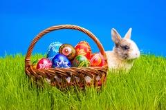 Wielkanocny jajko i królik w koszu Obrazy Royalty Free