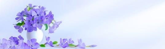 Wielkanocny jajko i sprig b??kitni kwiaty na b??kitnym tle Wielkanocna dekoracja obraz royalty free