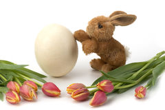 Wielkanocny jajko i tulipany z królikiem Fotografia Royalty Free