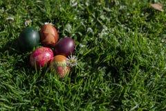 Wielkanocny jajko na trawie Obrazy Stock