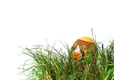 Wielkanocny jajko w trawie Obrazy Royalty Free