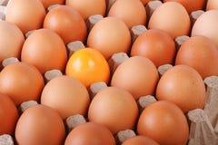 Wielkanocny jajko wśród brązu ones Zdjęcia Royalty Free