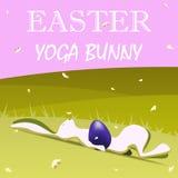 Wielkanocny joga królik Zdjęcie Royalty Free