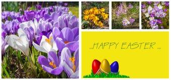 Wielkanocny kartka z pozdrowieniami z uroczymi obrazkami Zdjęcie Royalty Free