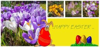 Wielkanocny kartka z pozdrowieniami z uroczymi obrazkami Obraz Royalty Free