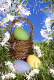 Wielkanocny kosz z jajkami Obrazy Royalty Free
