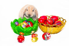 Wielkanocny królik i dwa kosza z Wielkanocnymi jajkami Fotografia Royalty Free