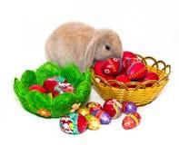 Wielkanocny królik i dwa kosza z Wielkanocnymi jajkami Zdjęcia Royalty Free