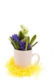 Wielkanocny królik i hiacynty Zdjęcia Royalty Free