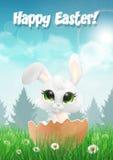 Wielkanocny królik kluje się od jajka na polu z kwiatami ilustracja wektor
