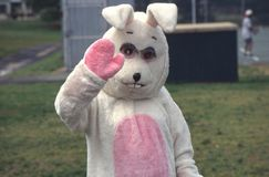 Wielkanocny królik macha przy kamerą zdjęcia royalty free