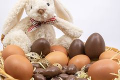 Wielkanocny królik przedstawia ciebie jego przyszłościowa dystrybucja Wielkanocni jajka fotografia royalty free