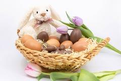 Wielkanocny królik w świeżym jajecznym koszu fotografia stock