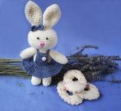 Wielkanocny królik z ciastkami i lawendą Obrazy Royalty Free