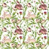 Wielkanocny królik z jajkami w trawie i kwiatach Bezszwowy kwiecisty Easter wzór akwarela Fotografia Stock