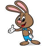 Wielkanocny królika Wskazywać Zdjęcia Royalty Free