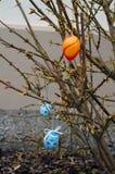 Wielkanocny krzak obrazy stock